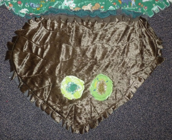 Head of the scrap turtle